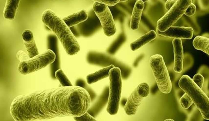 تعزيز نمو البكتيريا الصحية