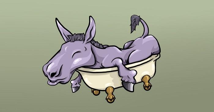 يُمنع السماح لحمارك بالنوم في حوض الإستحمام