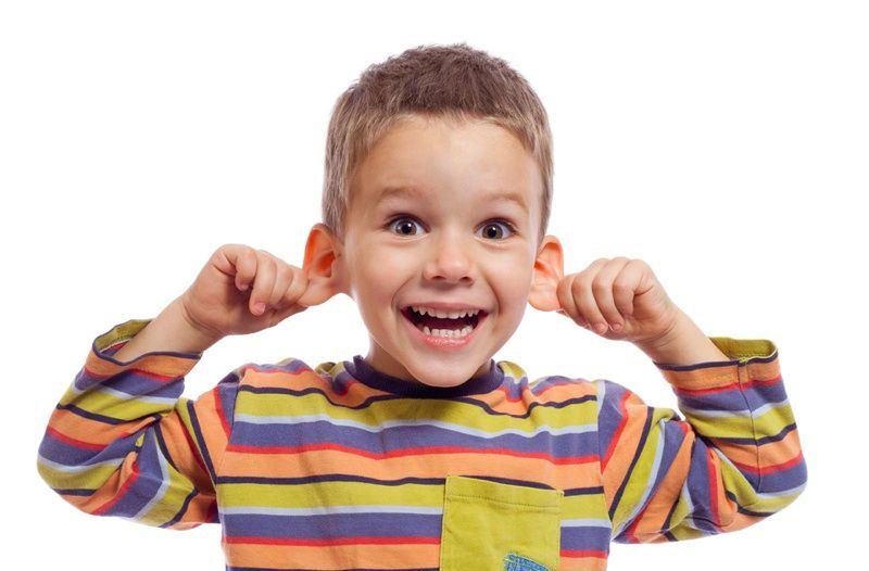 عضلات الأذن الخارجية
