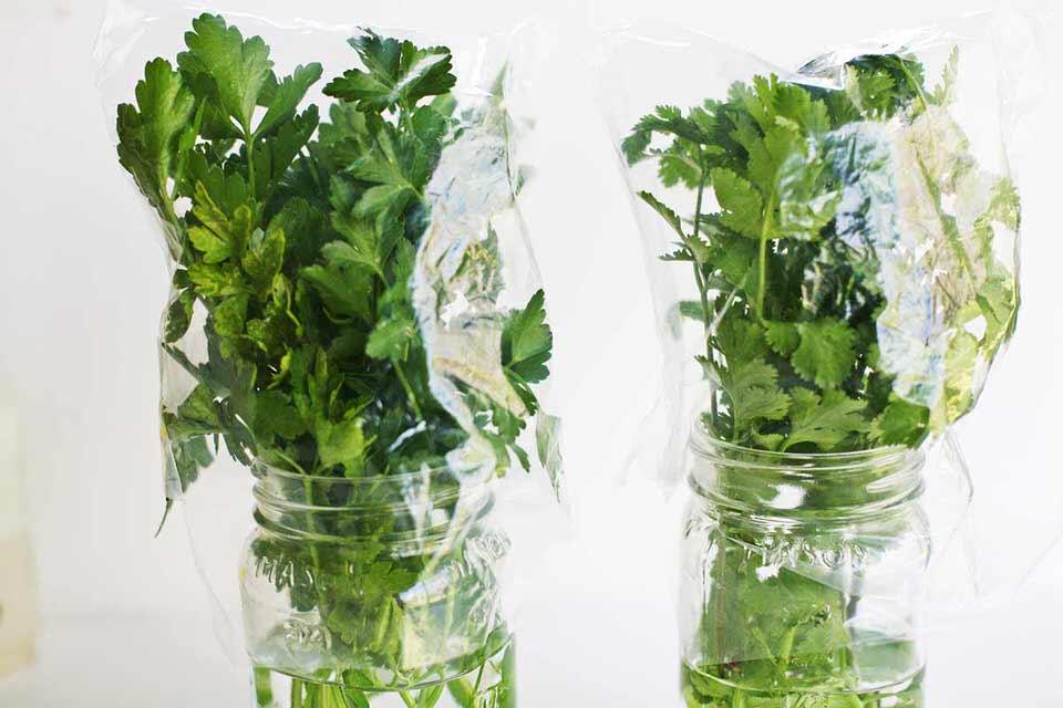 الأعشاب والخضروات المبللة