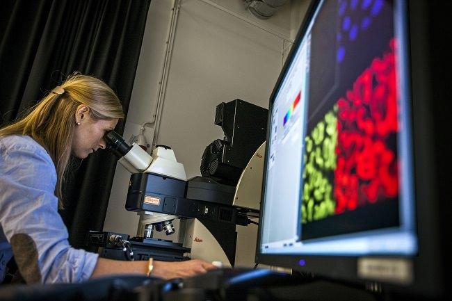 السويد - 28% من تلاميذها تخرجوا في المجالات العلمية