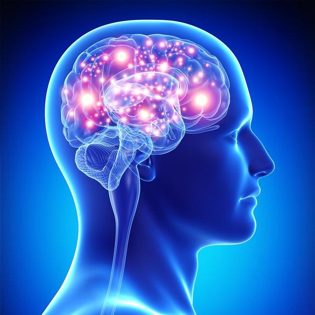 تحسين صحة الدماغ