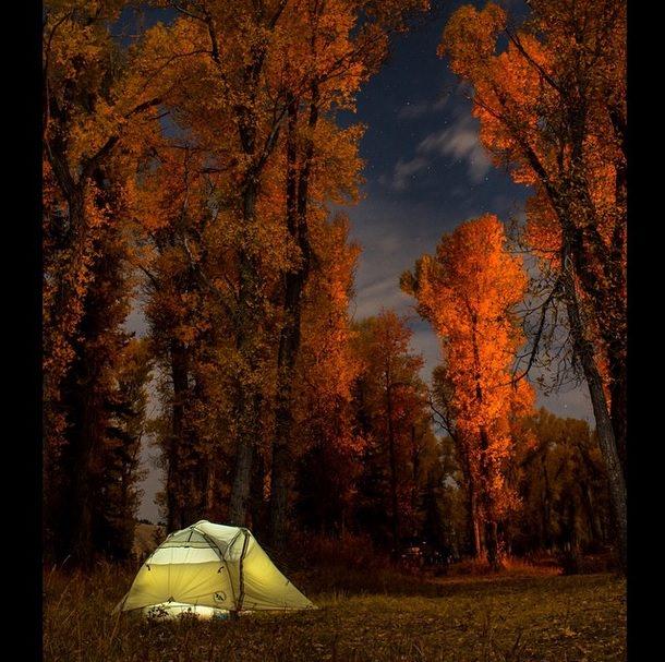 الخريف في مخيم Gros Ventre للمصور Beau Johnson