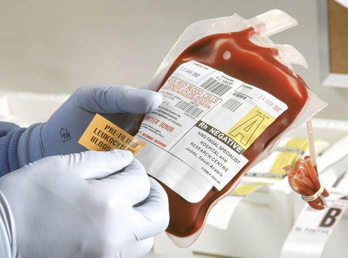 الدم - 120 دولار سنوياً