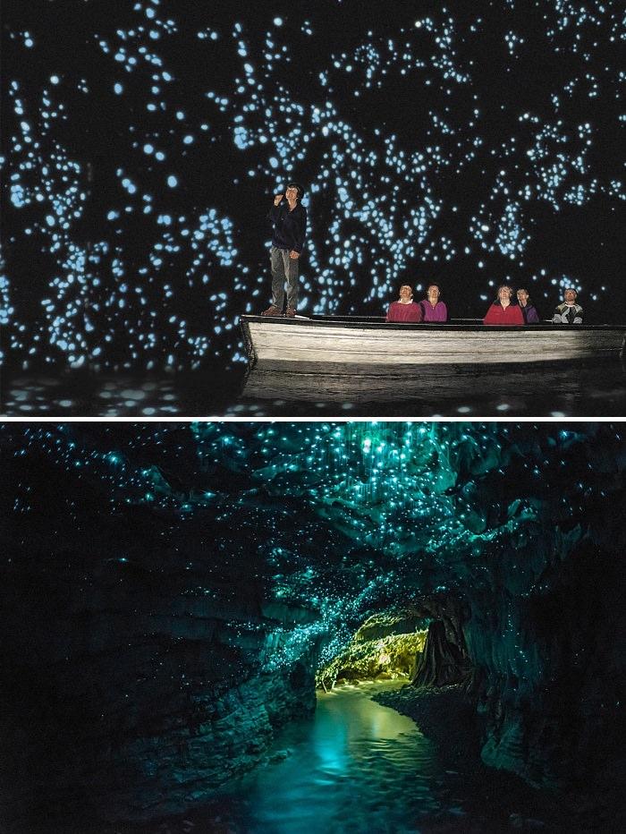 كهوف الحشرات المضيئة ـ Waitomo Caves