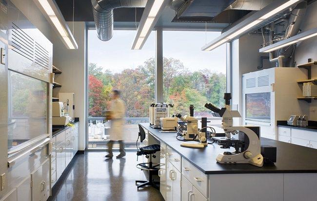 النمسا - 25% من تلاميذها تخرجوا في المجالات العلمية