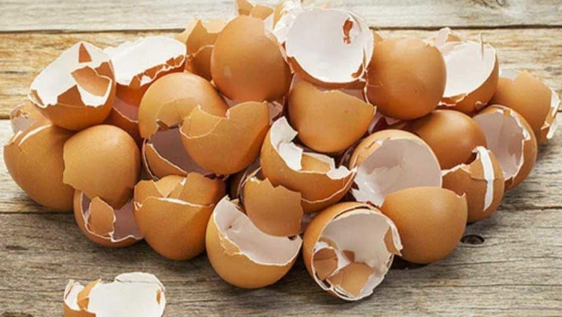 قشر البيض والمفاصل