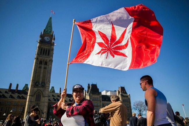 كندا - 12.7 بالمئة