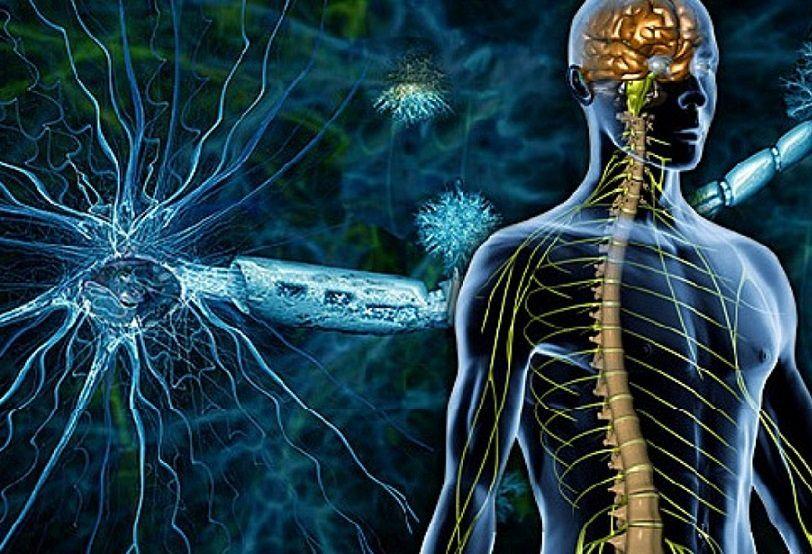 الوقاية من اضطرابات الجهاز العصبي