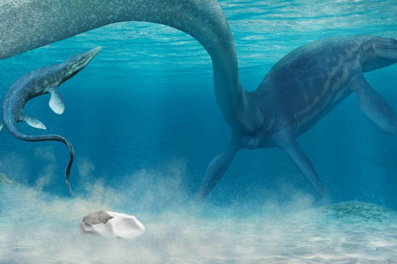 أكبر الزواحف البحرية