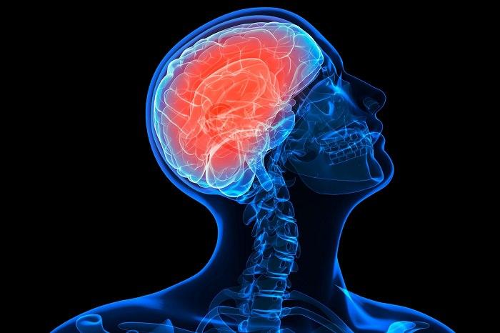 إزدياد نشاط الدماغ أثناء النوم