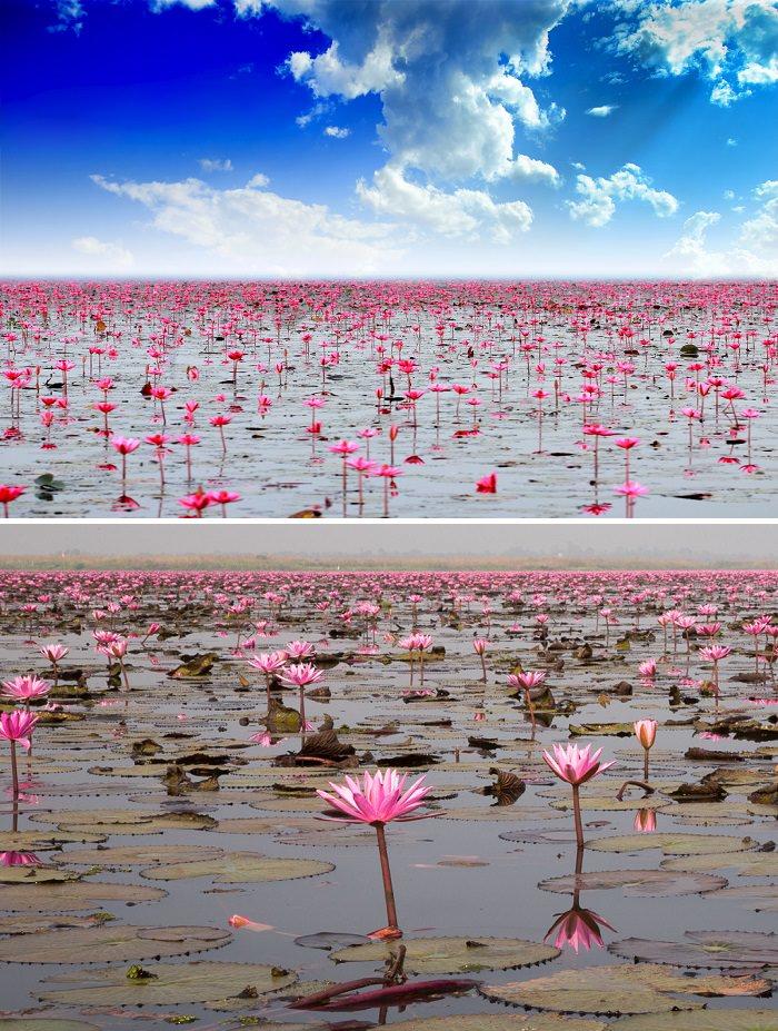 بحيرة نونغ هارن - تايلاند