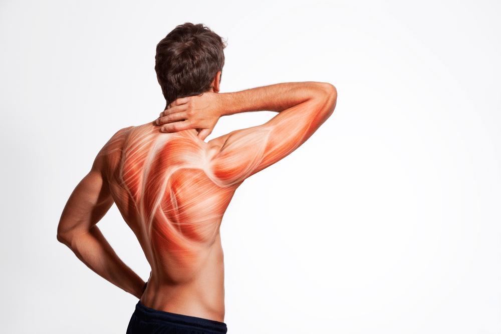يعالج آلام العضلات