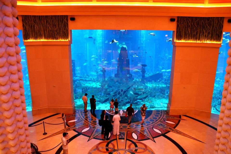 مرافق فندق اتلانتس دبي
