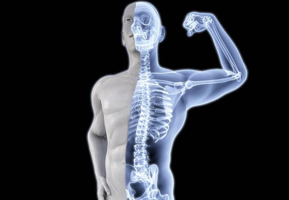 يحسن صحة العظام