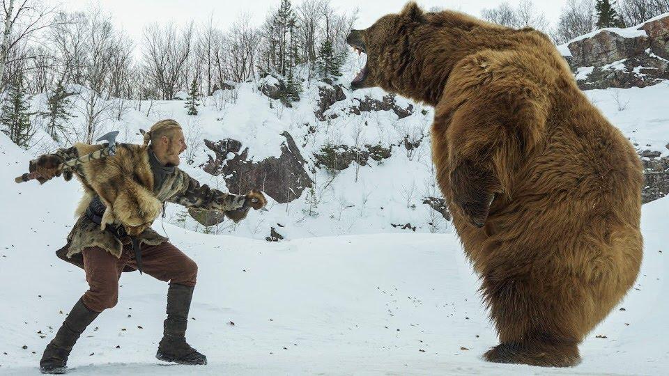 الدب العملاق