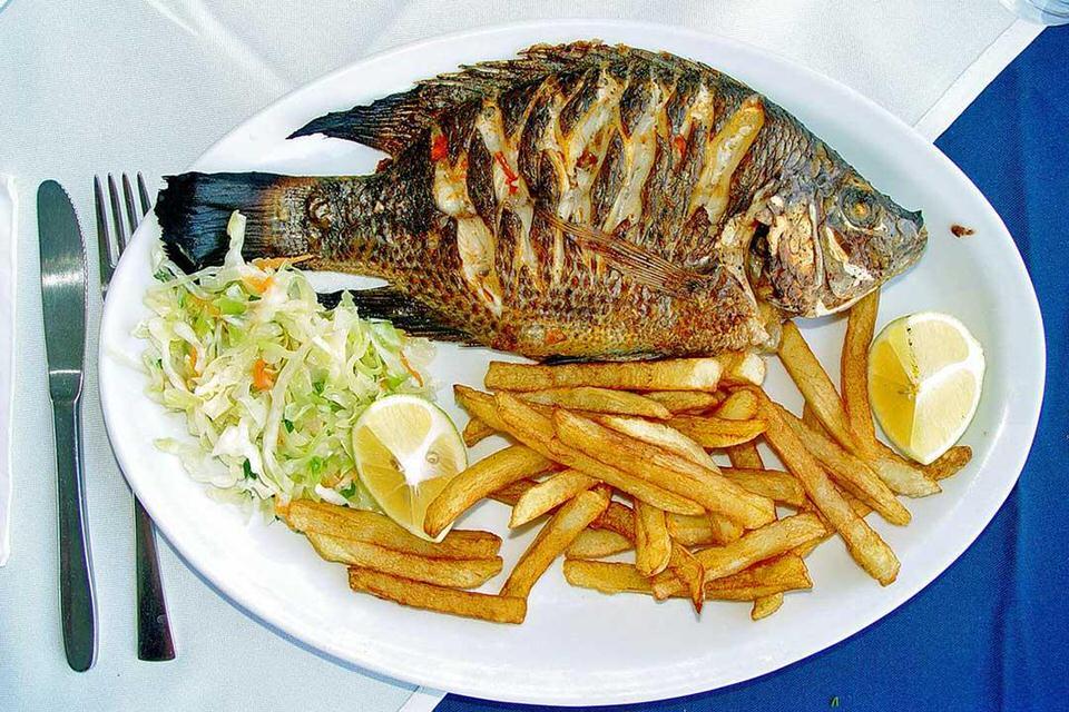 الإكثار من تناول الأسماك
