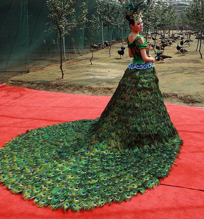 فستان زفاف الطاووس - 1.5 مليون دولار