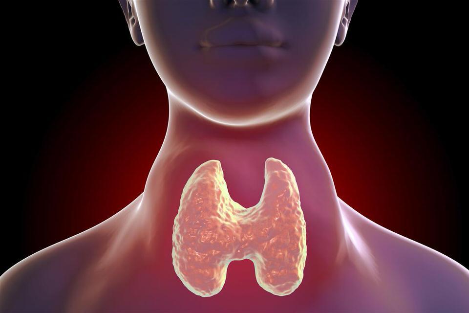 التهاب الغدد الصماء
