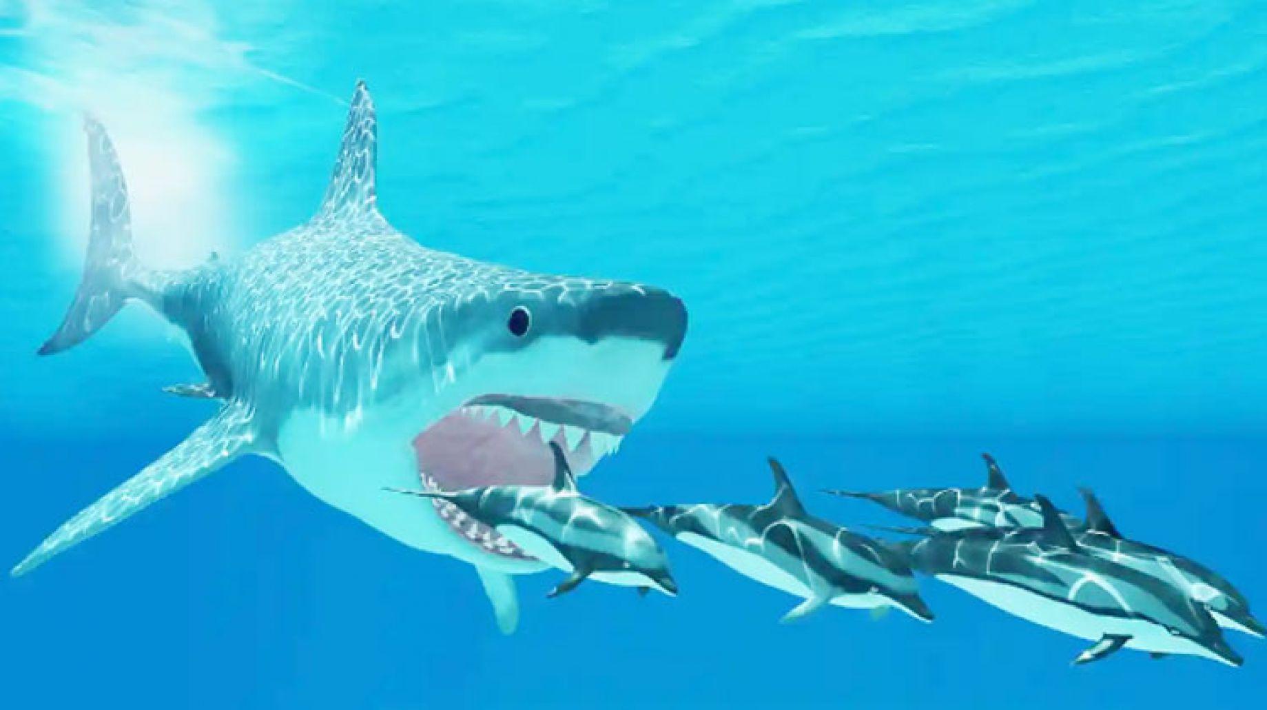 القرش الابيض