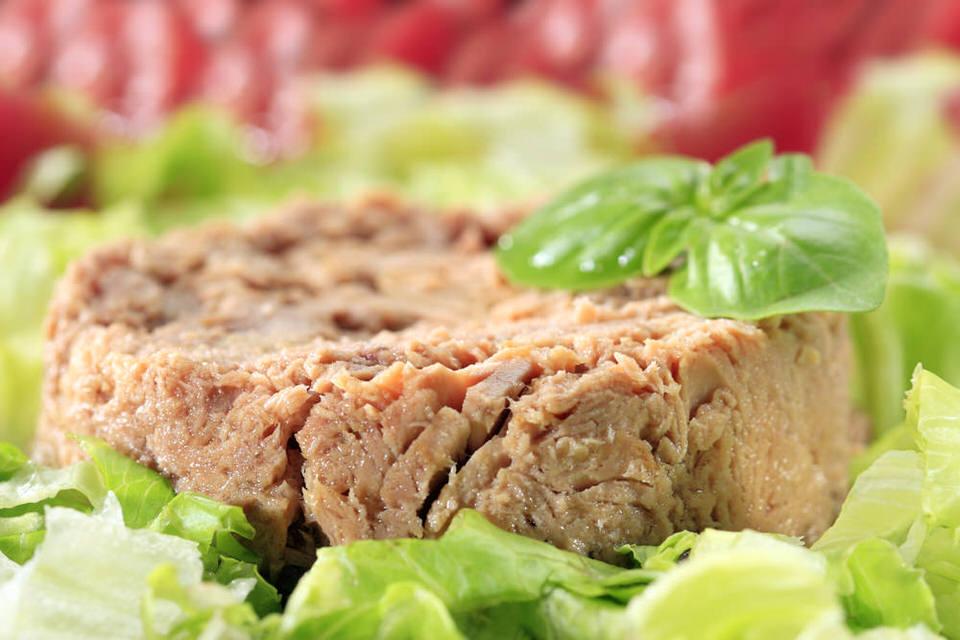 سمك التونة - نسبة البروتينات 29.4%