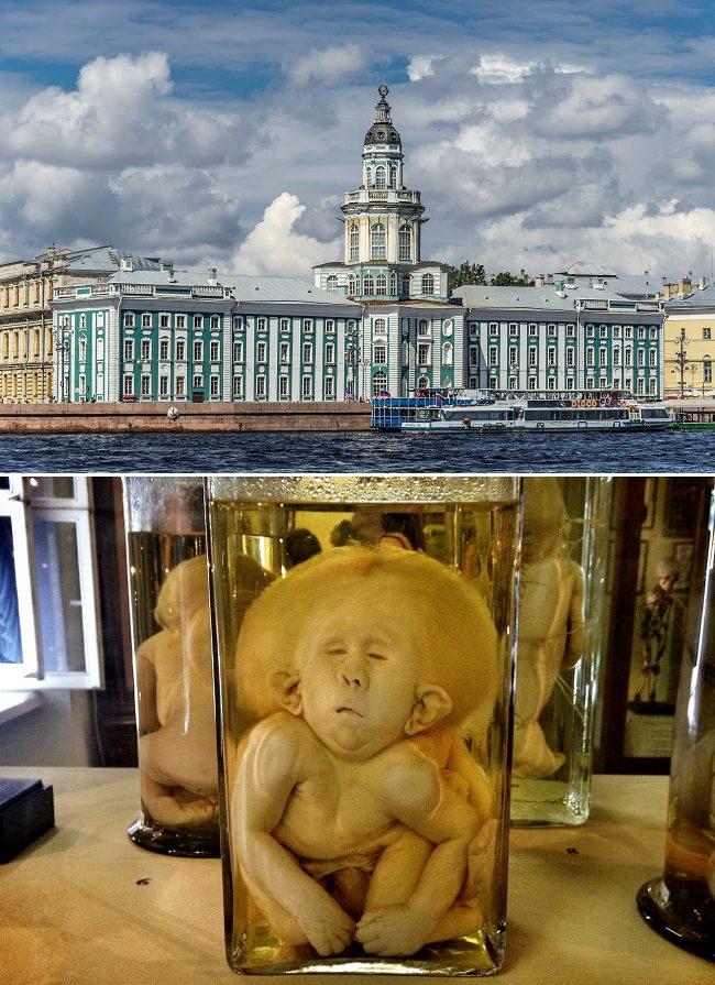 متحف كونست كاميرا - روسيا