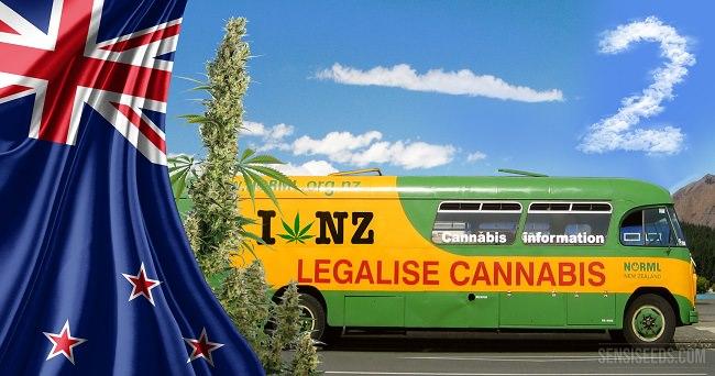 نيوزيلندا - 11 بالمئة