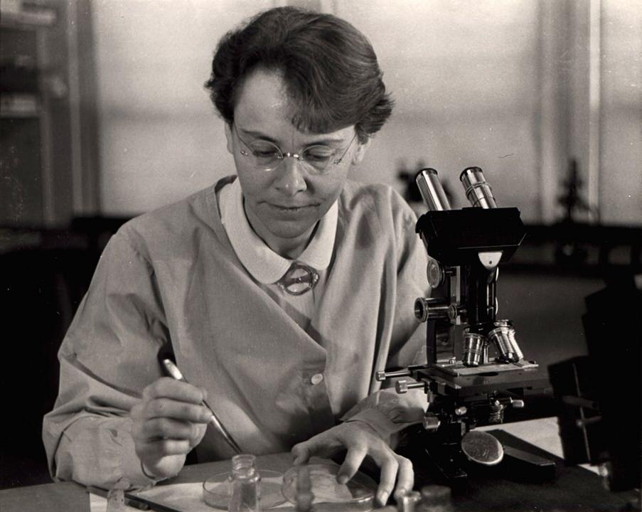 باربرا مكلنتوك: نوبل في الطب منفردة