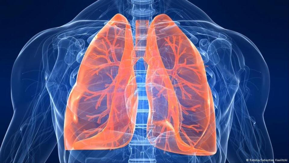 حساسية الجهاز التنفسي