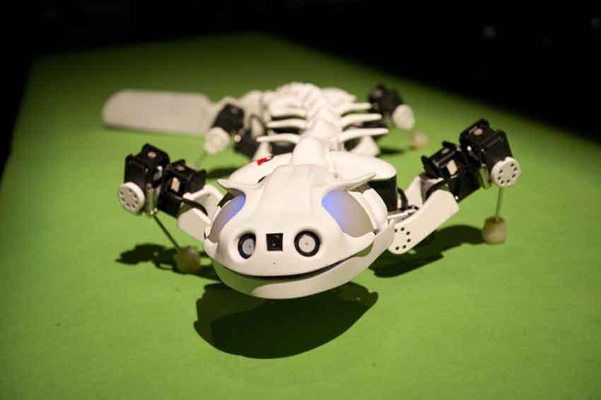 روبوت Pleurobot