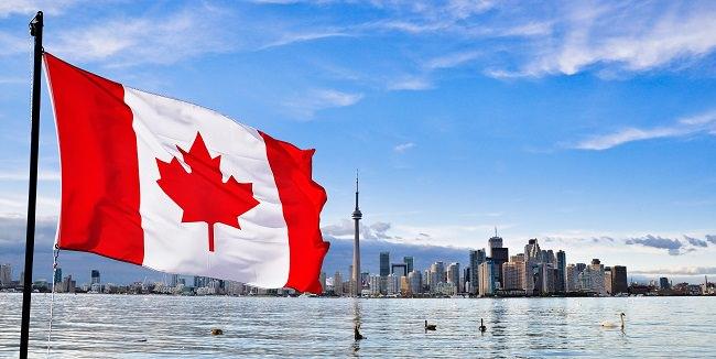 كندا - 429 مليون دولار