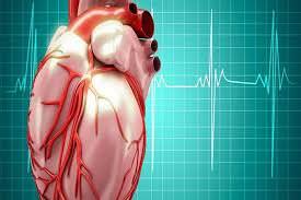 انخفاض كتلة العضلات وعملية الأيض