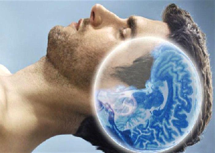 النوم و الدماغ