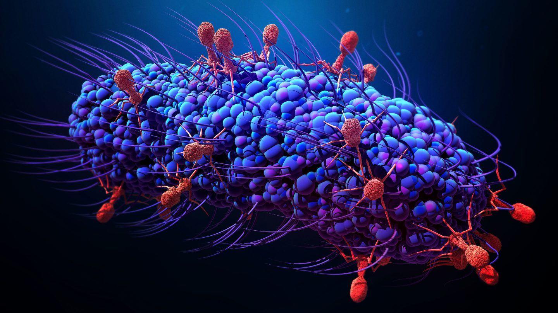 لمكافحة الجراثيم والبكتيريا