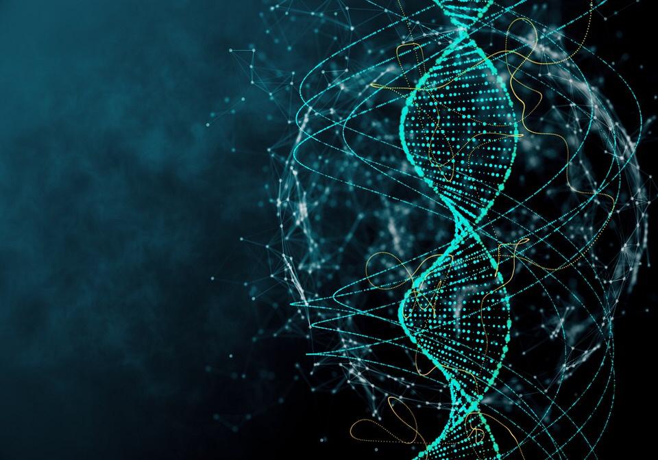 اكتشاف الحمض النووي
