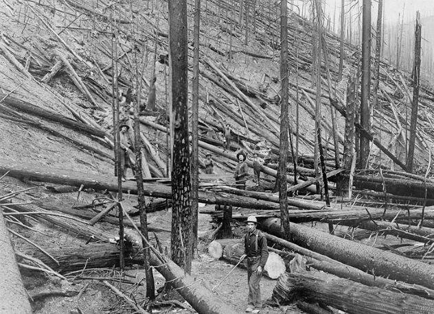الحريق الكبير - الولايات المتحدة الأمريكية سنة 1910