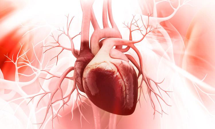 علاج قصور القلب سوي الوظيفة القذفية عن طريق أدوية السكري