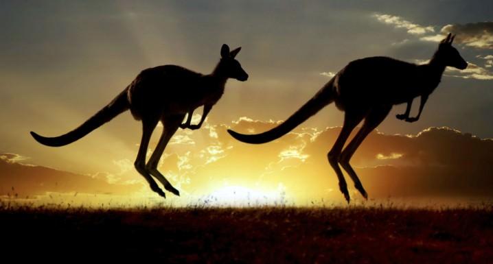 أستراليا - 1،000،000 دولار