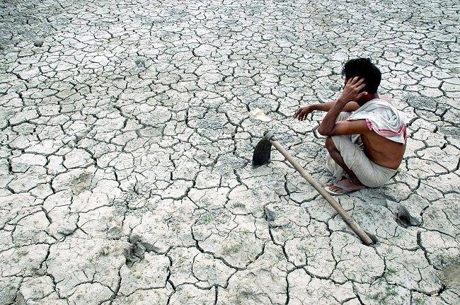 انتحار مزارعي القطن بالهند - 1،500 شخص