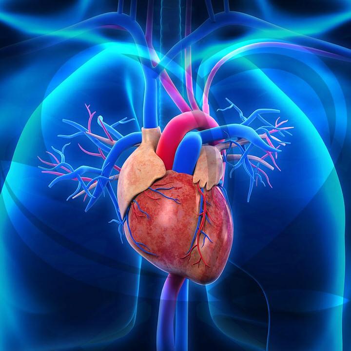 ماء زمزم في علاج امراض القلب